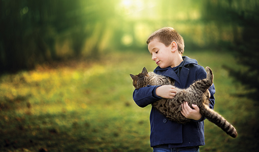 Boy hugging cat