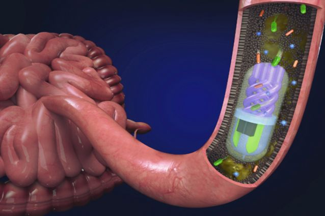 Microbiome sampling pill in the small intestine