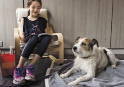 08/03/2017 - Medford/Somerville, Mass. - A child participating in a research study reads to a dog on August 3, 2017. Deborah Linder, Research Assistant Professor at the Cummings School of Veterinary Medicine at Tufts University, is leading a project to study the effect of therapy dogs on the stress level of children working on reading skills.   (Alonso Nichols/Tufts University) CROP NAME OUT BEFORE USE