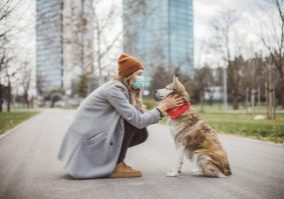 woman with medical mask on bent down in front of her dog holding his face