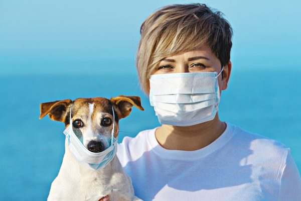 Woman in protective surgical mask holds dog in face mask. Chinese Coronavirus 2019-nCoV dangerous for pets.