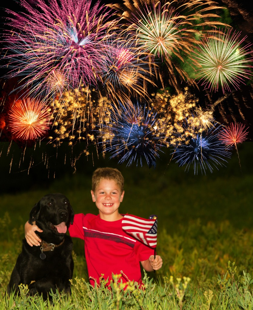 Boy with dogs and fireworks