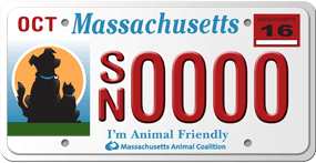 I'm Animal Friendly MA License Plate