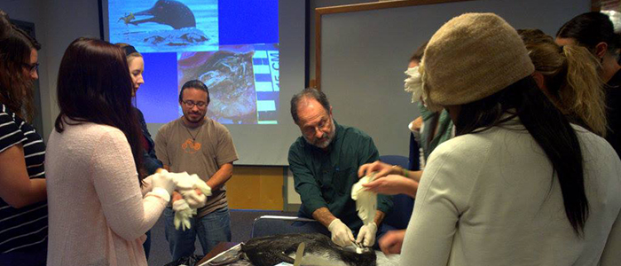 MCM students learn about loon mortality